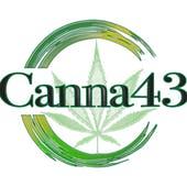 Canna43