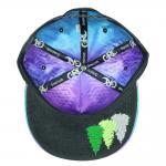 Camproots Purple v2 Snapback